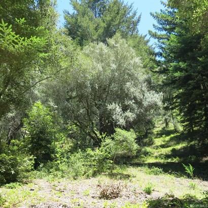 200 Mckenzie Creek Rd, Scotts Valley, CA - USA (photo 2)