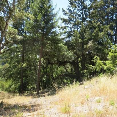 200 Mckenzie Creek Rd, Scotts Valley, CA - USA (photo 3)