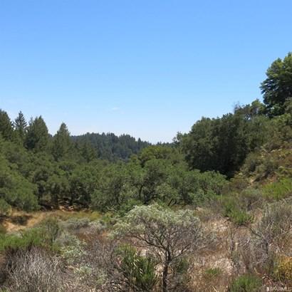 200 Mckenzie Creek Rd, Scotts Valley, CA - USA (photo 4)