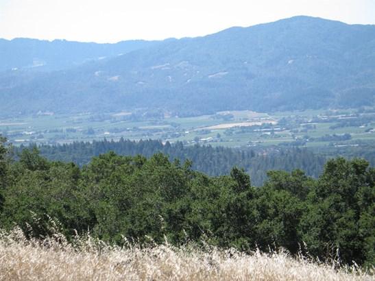 0 Greenfield Road, St. Helena, CA - USA (photo 5)