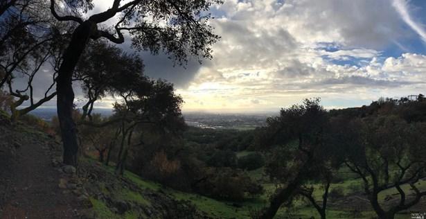 3817 Skyfarm Drive, Santa Rosa, CA - USA (photo 4)