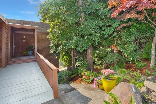 339 County View, Mill Valley, CA - USA (photo 1)