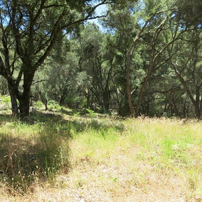 200 Mckenzie Creek, Scotts Valley, CA - USA (photo 3)