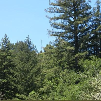 200 Mckenzie Creek, Scotts Valley, CA - USA (photo 5)