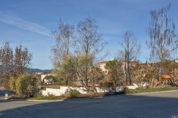 120 Canyon Drive, Napa, CA - USA (photo 2)