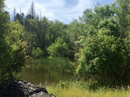 9800 Road 150b, Boonville, CA - USA (photo 5)