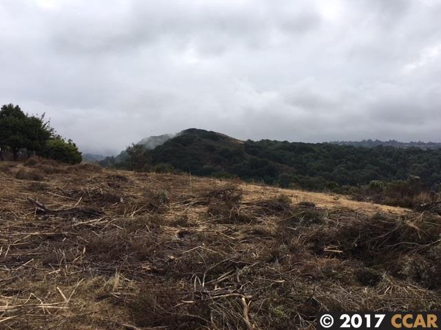 0000 Jensen, Castro Valley, CA - USA (photo 2)