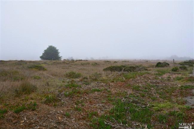 415 Mcchristian Avenue, Bodega Bay, CA - USA (photo 2)