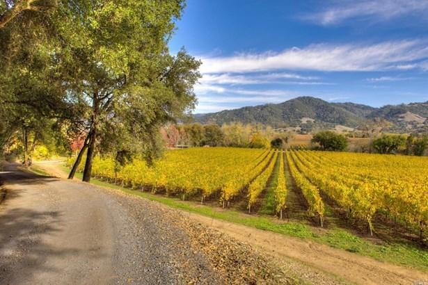 4120 West Sausal Lane, Healdsburg, CA - USA (photo 4)