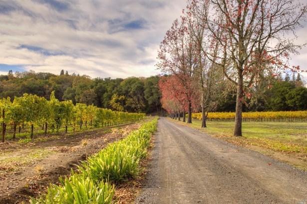 4120 West Sausal Lane, Healdsburg, CA - USA (photo 5)