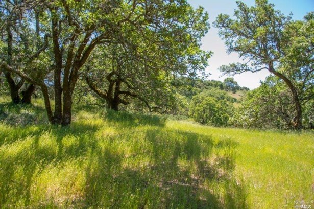 930 Shiloh Oaks Road, Windsor, CA - USA (photo 1)