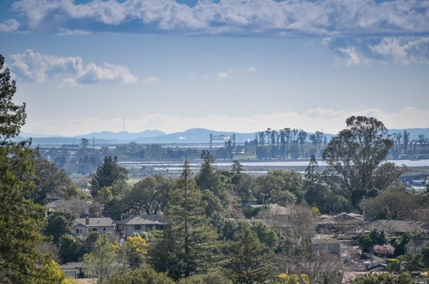1515 Maxwell Avenue, Napa, CA - USA (photo 4)