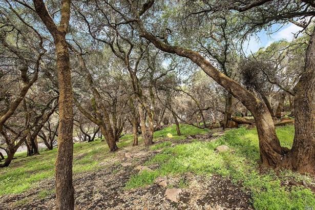 3820 Clear Ridge, Santa Rosa, CA - USA (photo 2)