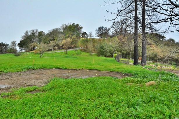 1611 Riebli Road, Santa Rosa, CA - USA (photo 4)