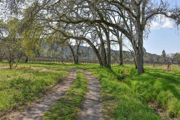 744 Lawndale Road, Kenwood, CA - USA (photo 5)