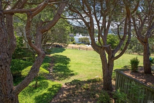 53 Eucalyptus Knoll Street, Mill Valley, CA - USA (photo 2)