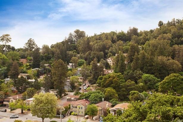 51 El Camino Avenue, San Rafael, CA - USA (photo 5)
