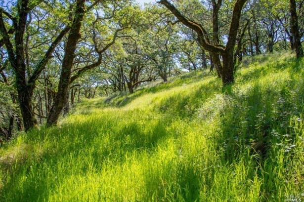930 Shiloh Oaks Road, Windsor, CA - USA (photo 3)