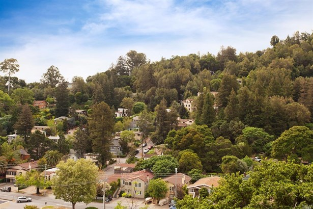 51 El Camino Avenue, San Rafael, CA - USA (photo 4)