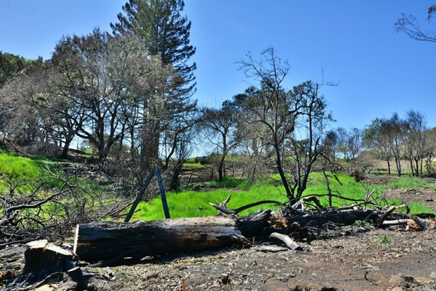4740 Wallace Road, Santa Rosa, CA - USA (photo 5)