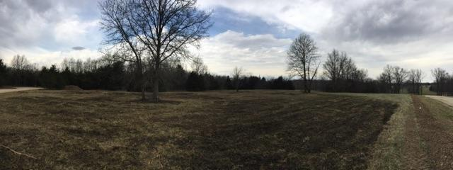 Vacant Land - HALLSVILLE, MO (photo 5)