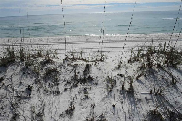 Multi-Family - Orange Beach, AL (photo 3)