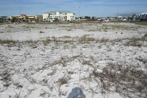 Multi-Family - Orange Beach, AL (photo 4)