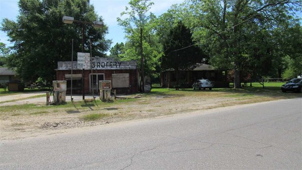 Cottage, Residential Detached - Mount Vernon, AL (photo 3)