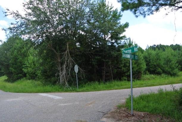 Corner - Bon Secour, AL (photo 1)