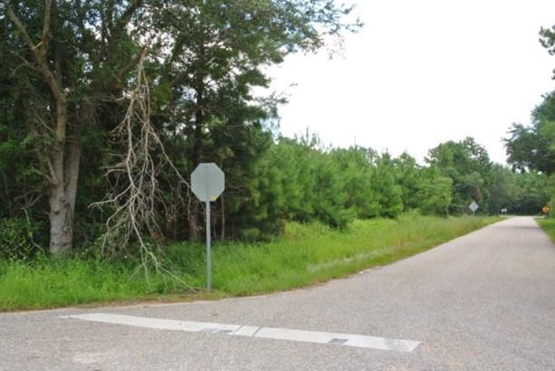 Corner - Bon Secour, AL (photo 2)