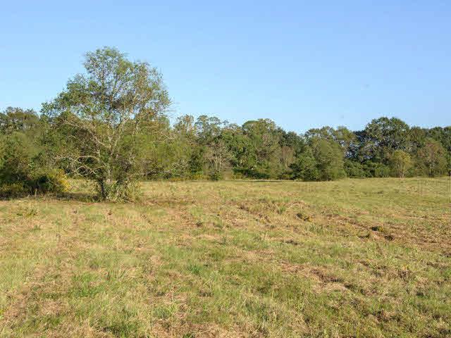 Land - Loxley, AL (photo 2)