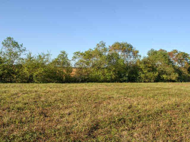 Land - Loxley, AL (photo 4)