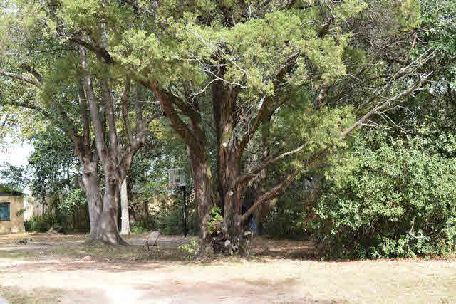 Residential Lots - Chickasaw, AL (photo 2)
