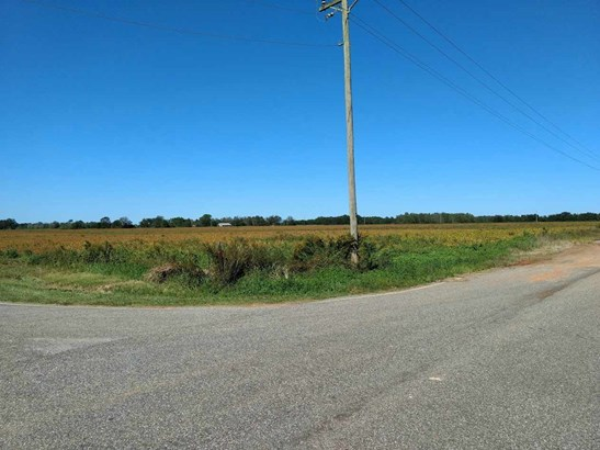 Land - Summerdale, AL (photo 3)