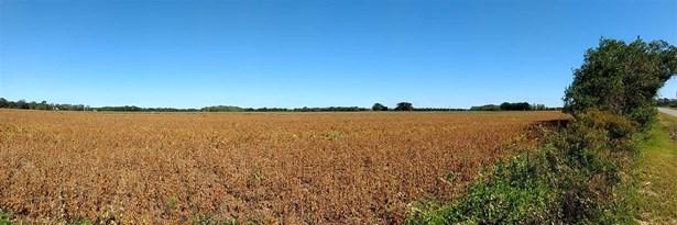 Land - Summerdale, AL (photo 4)