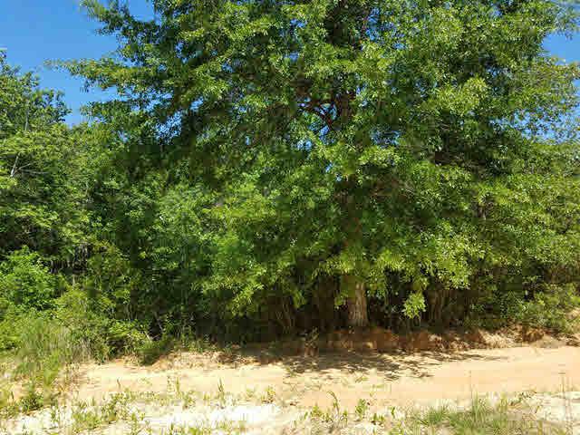 Land - Bay Minette, AL (photo 2)