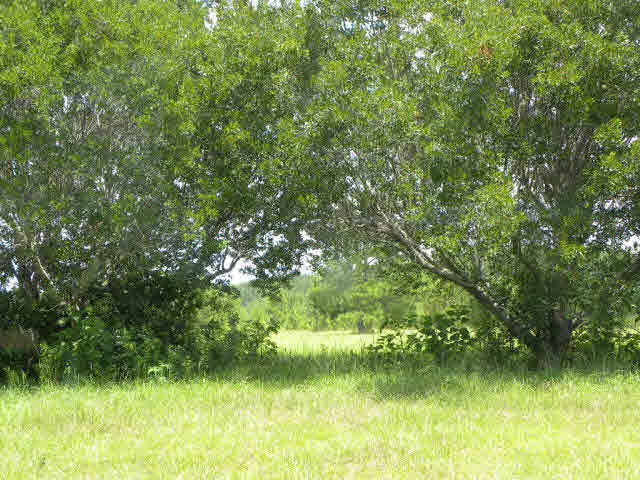 Residential Lots - Bay Minette, AL (photo 3)