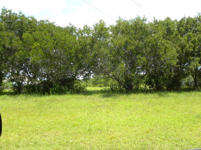Residential Lots - Bay Minette, AL (photo 4)