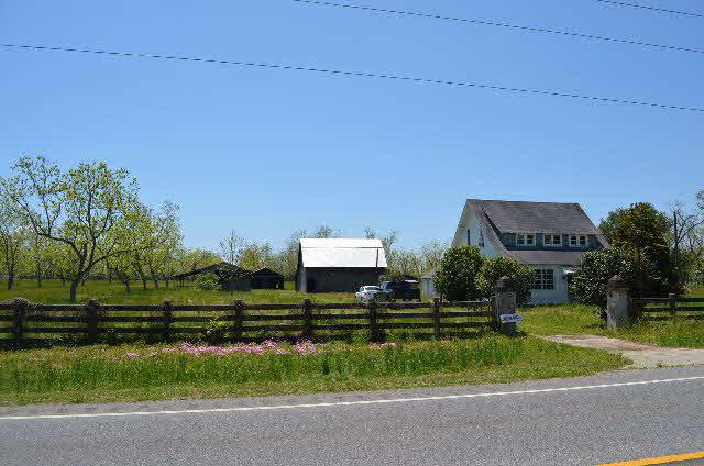 Land - Lillian, AL (photo 2)