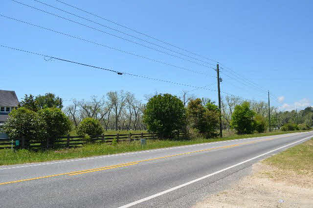 Land - Lillian, AL (photo 4)