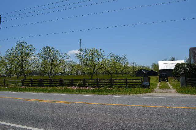 Land - Lillian, AL (photo 5)