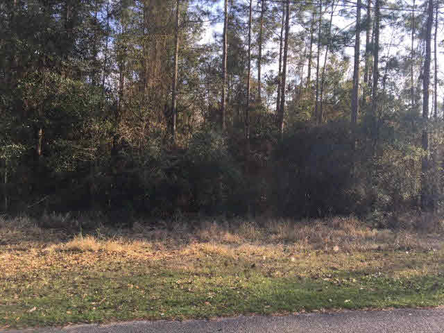 Residential Lots - Axis, AL (photo 1)