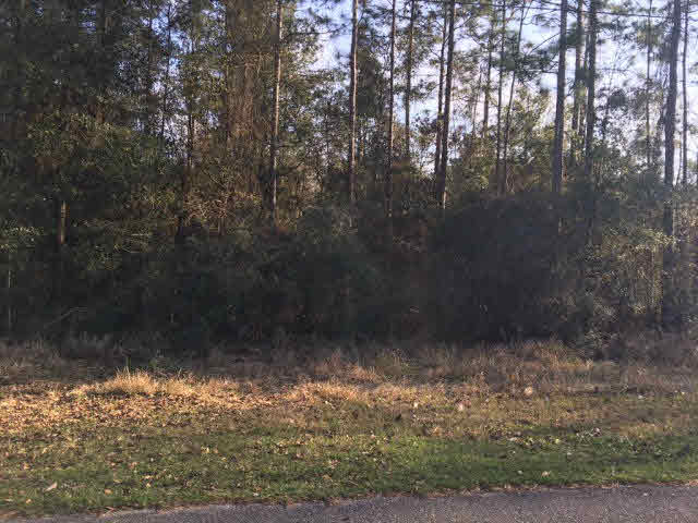 Residential Lots - Axis, AL (photo 2)