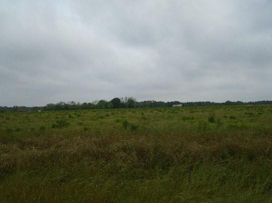 Residential Lots - Elberta, AL (photo 3)