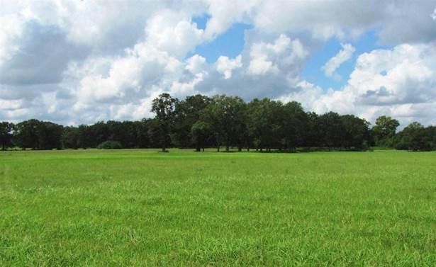 Land - Wilmer, AL (photo 1)