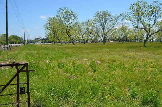 Land - Lillian, AL (photo 1)