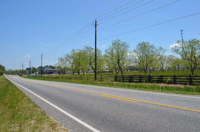 Land - Lillian, AL (photo 3)
