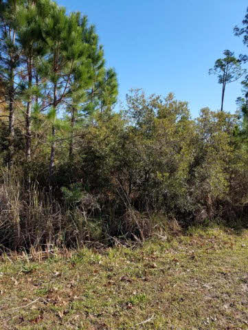 Residential Lots - Elberta, AL (photo 1)