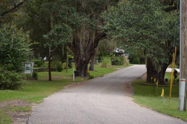 Cottage, Single Family - Foley, AL (photo 5)