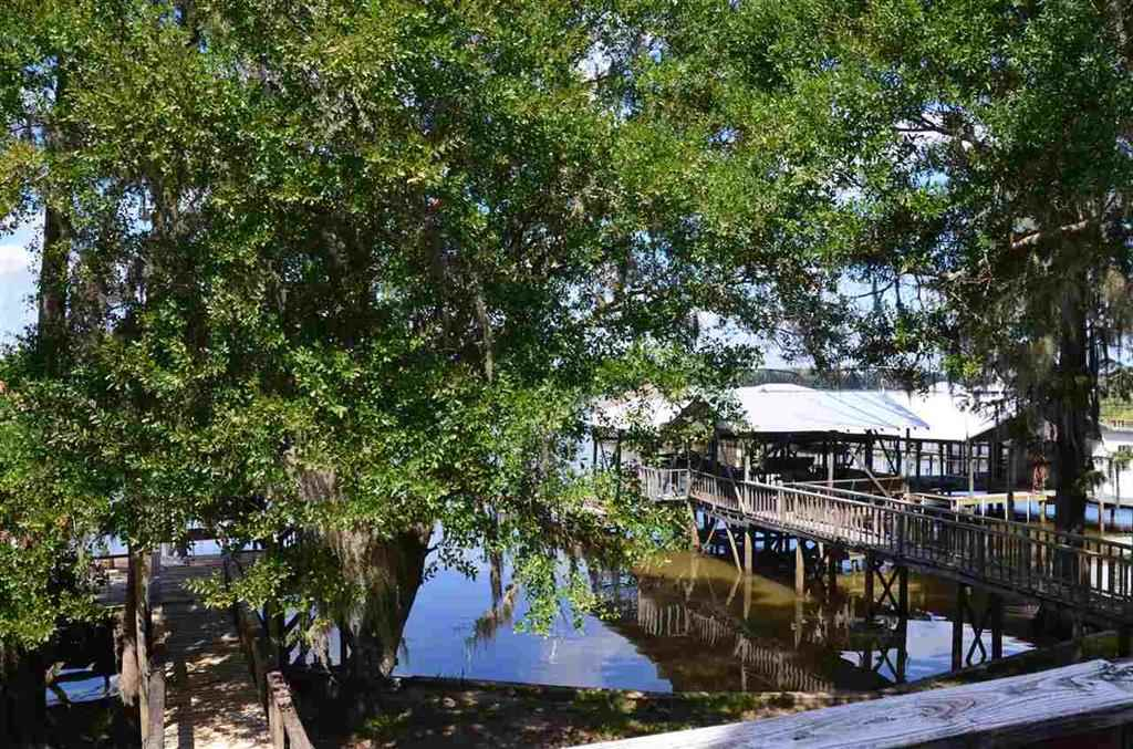 Raised Beach, Residential Detached - Bay Minette, AL (photo 3)